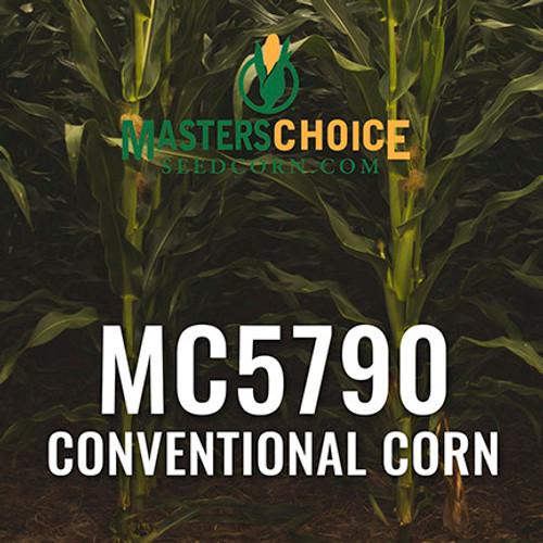 MC5790 Hybrid Corn