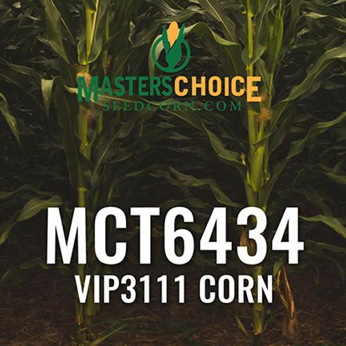 MCT6434 Hybrid Corn
