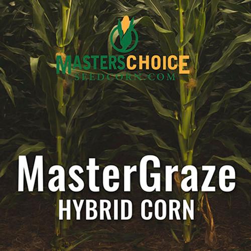 MasterGraze BMR Corn