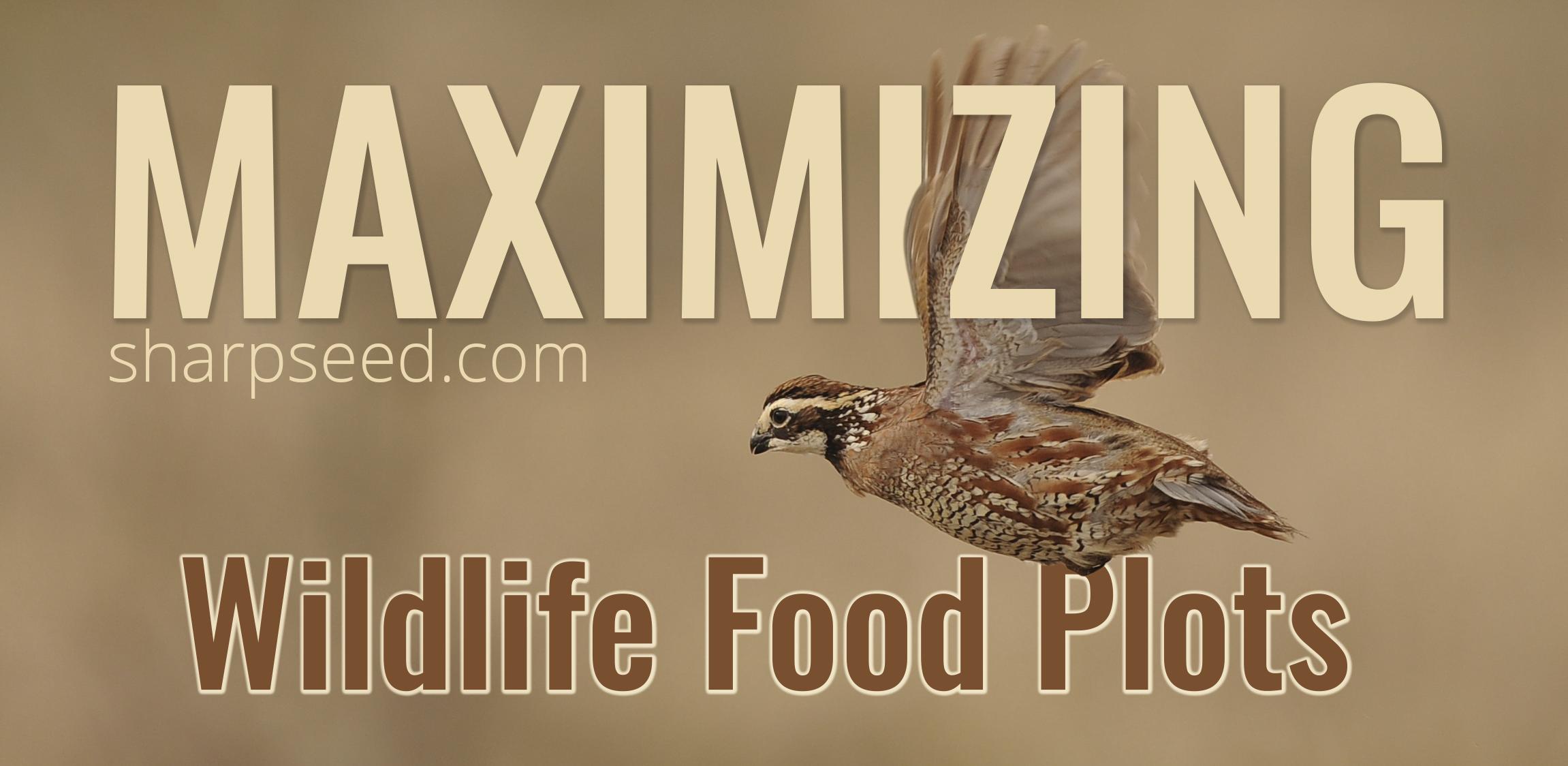Maximizing Wildlife Food Plots