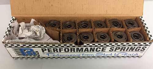 NEW PSI DR1048 Valve Springs (set of 11)