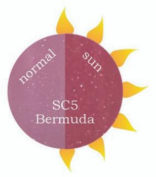 Dip Powder - SC5 Bermuda