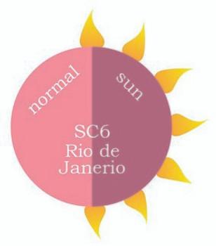 Dip Powder - SC6 Rio de Janerio