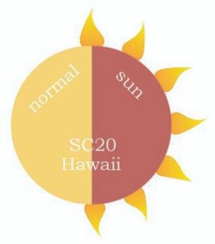 Dip Powder - SC20 Hawaii