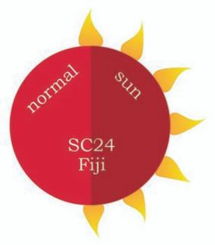 Dip Powder - SC24 Fiji