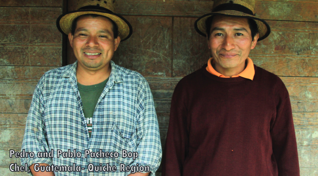 Specialty Coffee Happens thanks to Indigenous Peoples