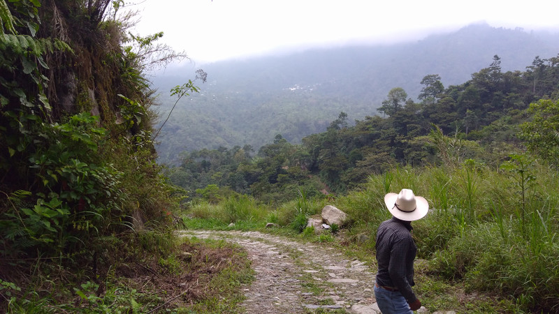 Coffee Education at Origin: Our Roaster Gets a Deeper Look in Guatemala