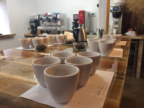 Café Campesino Training Lab in an SCA Premier Training Campus for professional baristas