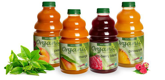 Cafe Campesino wholesale carries Dr. Smoothie organic smoothie bases