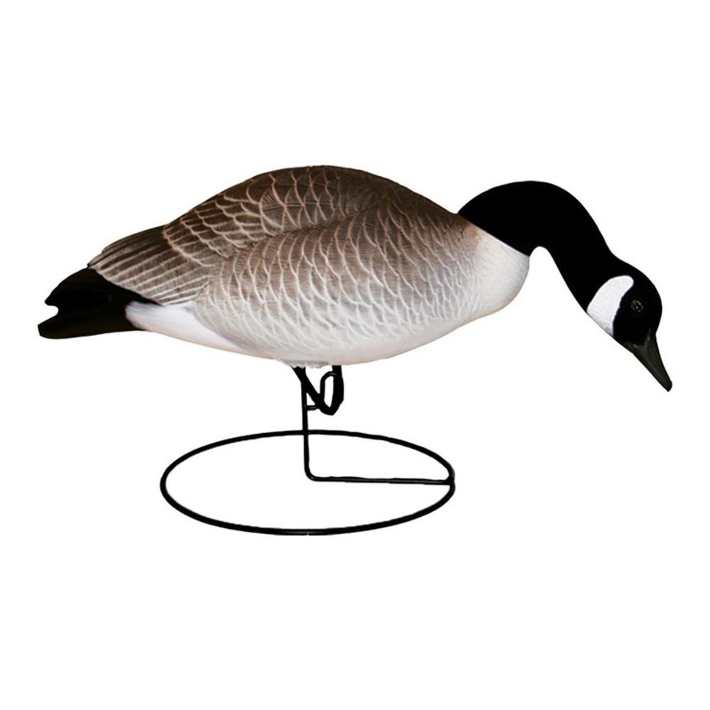 Hard Core Canada Geese, Feeder, 6 pk