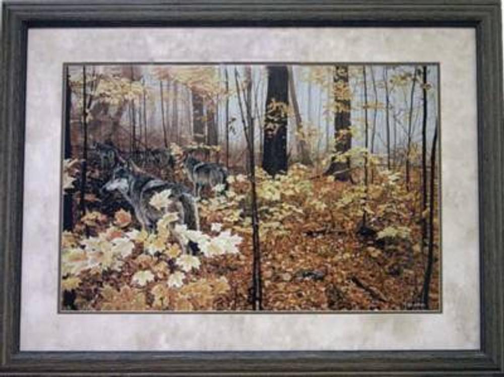 Autumn Maples Picture