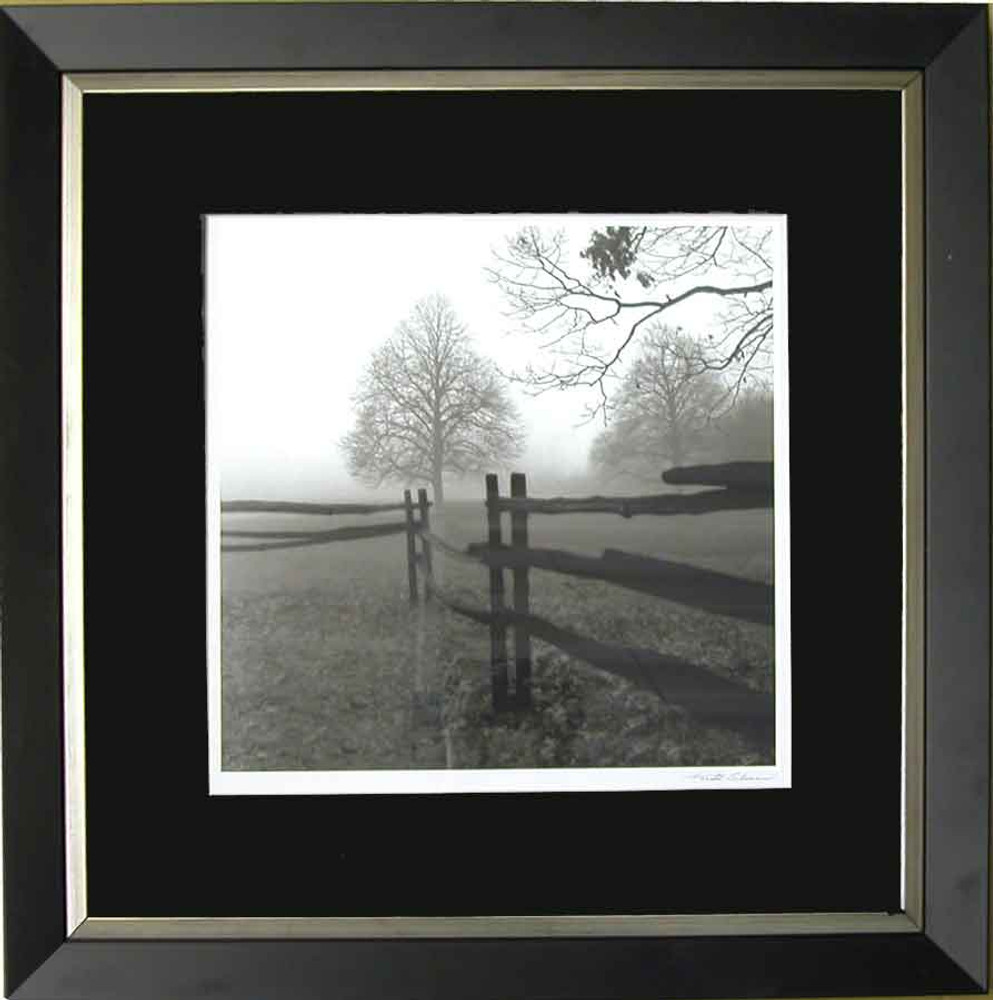 Farm Fence and Tree, Black & White Picture