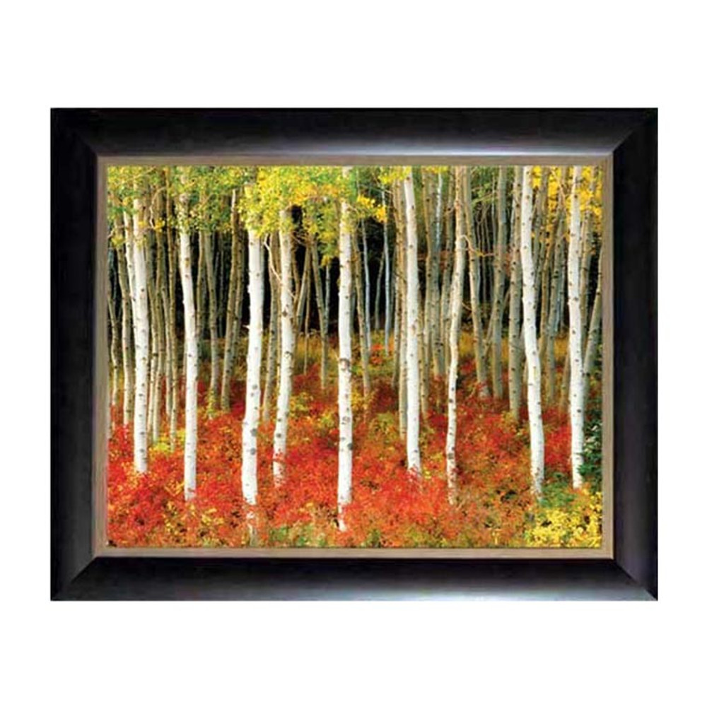 Double Mat Aspen Grove Picture at 26x34