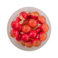 CLEAR GOLD - FLUORESCENT RED