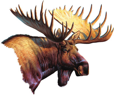 Rivers Edge Magnetic Art, Moose