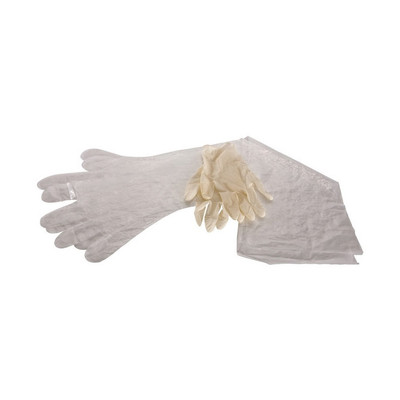 Allen Field Dressing Gloves, 12 pk