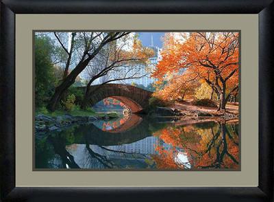 Gapstow Bridge, Fall Picture