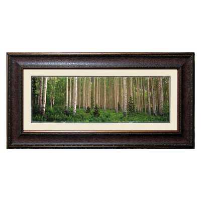 Double Mat Birch Tree Picture 16x40