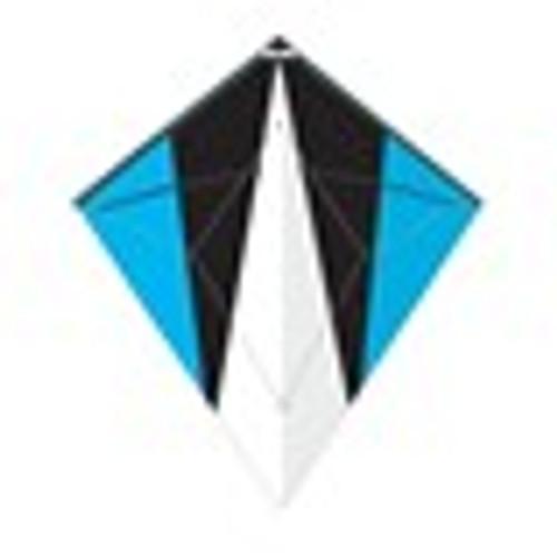 Dual Control Sport - Blade Diamond Kite