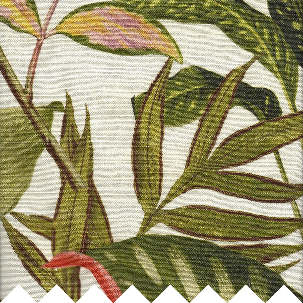 drake-jungle-detail.jpg