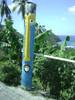 Funny Rastafarian Pencil from St Lucia