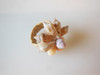 Seashell Ring from the South Pacific #2