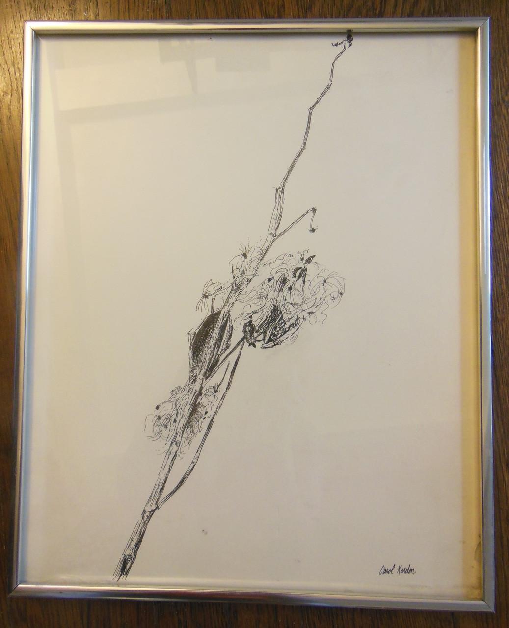 Carol Kardon. Detailed Flower in Black and White. Framed drawing