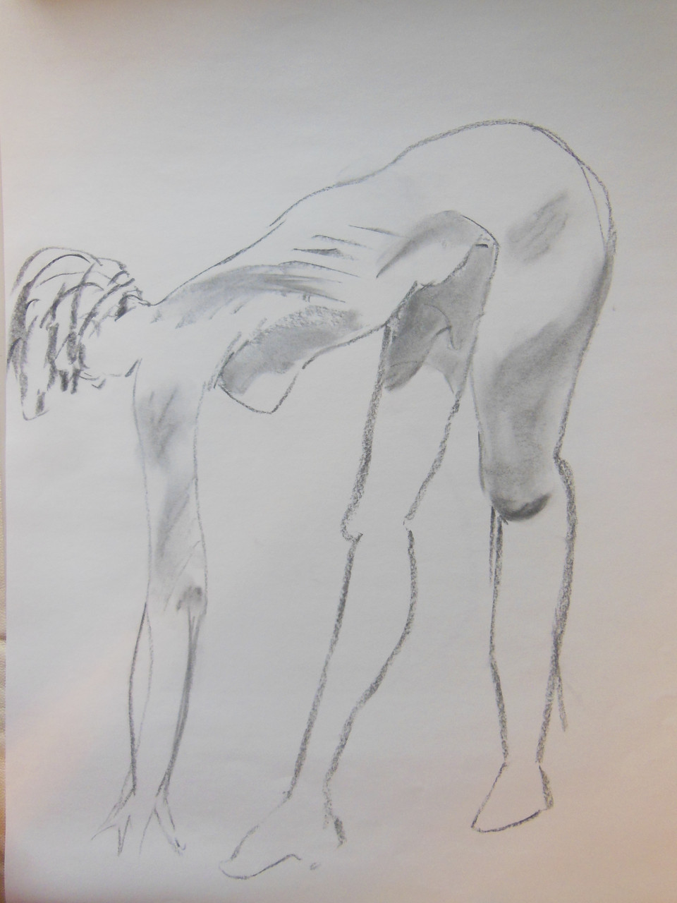 Unfinished Study. Pencil on paper # 4