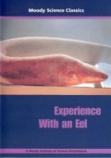 Experience With An Eel - DVD