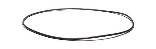 Rainbow filter lid o-ring #5