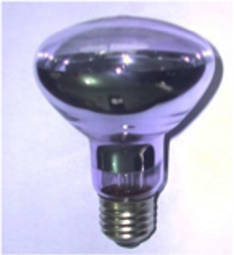 Basking Bulb 60watt