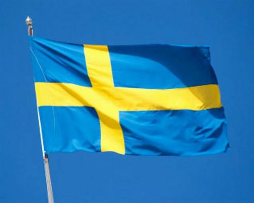 Swedish Flag, 2'x 3'