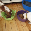Extra Small Shallow Tubtrugs are an easy way to feed your pets.