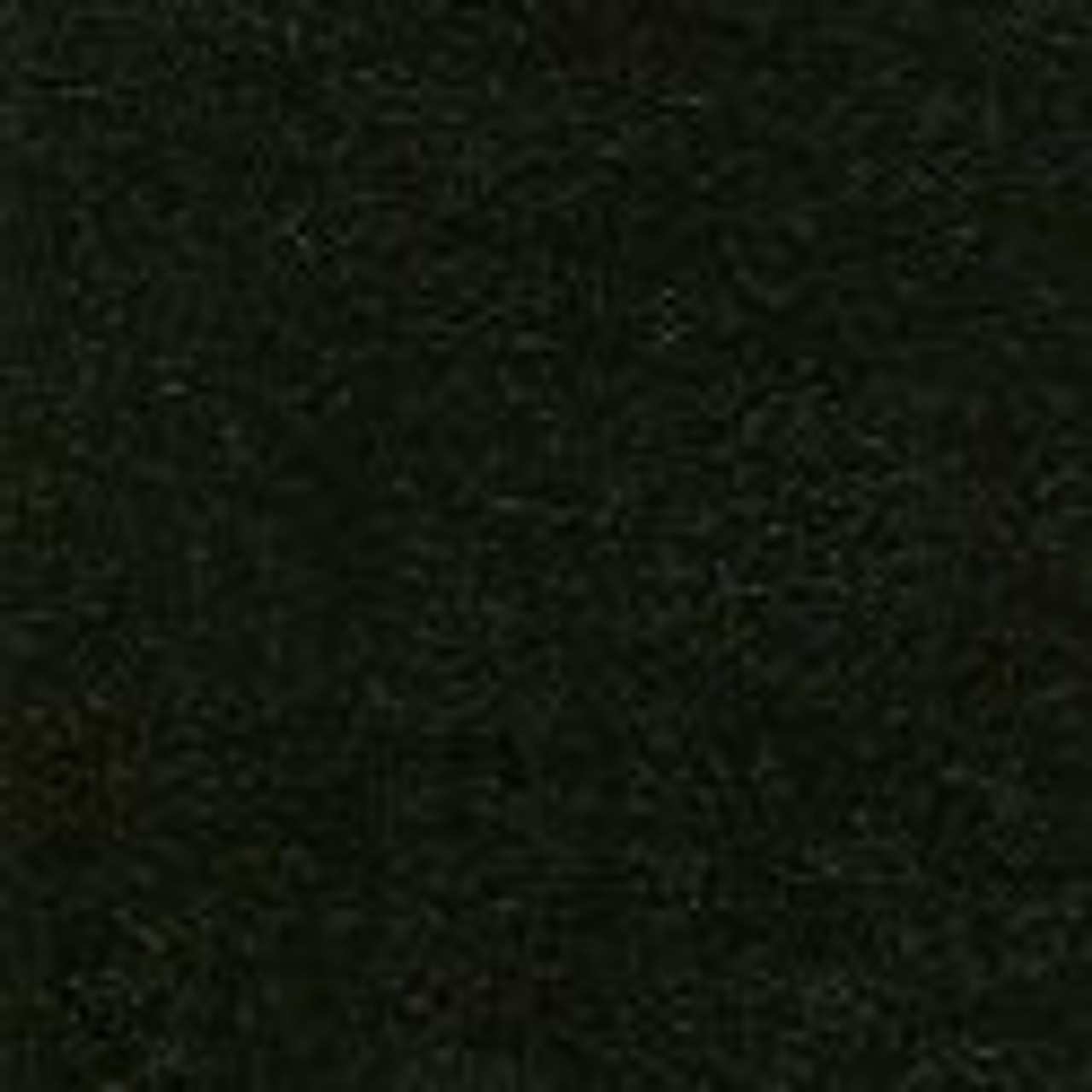 "AQUA-TURF Black Marine Carpet 72"""