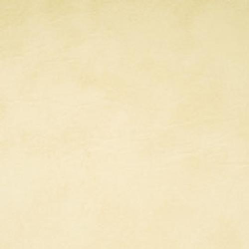 "Biscayne Bone #114 Vinyl 54"""