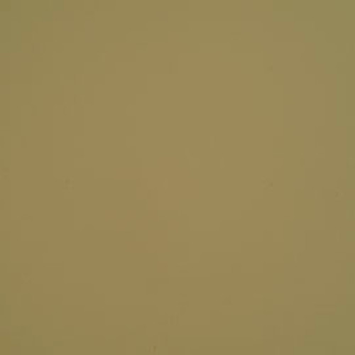 Prodigy Light Neutral #682 Vinyl 54""