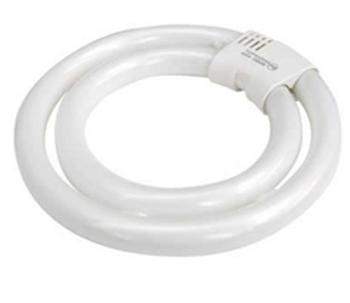 3204051K TCP 40W T6 Double Circline Lamp - Daylight