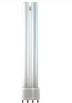 DT18/41/RS EiKO (49285) 18 Watt PL-L Lamp