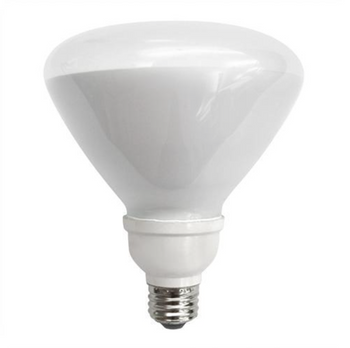 TCP 23 Watt R40 Floodlight 51K (1R4023) Lamp