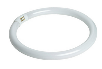 32032 TCP 32W Circline Bulb
