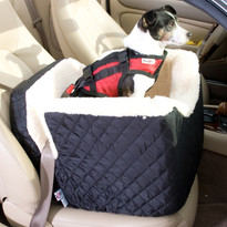 The Lookout Pet Car Seat