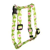 "Green Daisy Roman Style ""H"" Dog Harness"