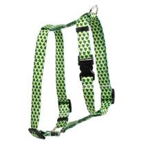 """Petite Shamrock Roman Style """"H"""" Dog Harness"""