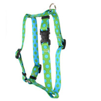 "Green and Blue Polka Dot Roman Style ""H"" Dog Harness"