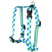 "Blue and Green Argyle Roman Style ""H"" Dog Harness"