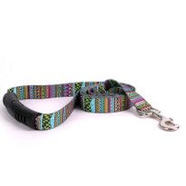 Festival Stripe EZ-Grip Dog Leash