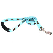 Blue and Brown Skulls Dog Leash