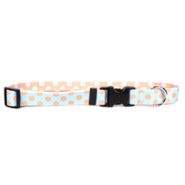 Blue and Melon Polka Dot Dog Collar with Tag-A-Long
