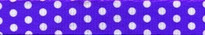 New Purple Polka Dot Waist Walker