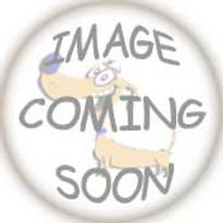 Detroit Tigers Dog Harness